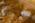 Arabie Saoudite. Madâin Sâlih. Mission archéologique franco-saoudienne dans l'antique cité nabatéenne de Hégra. Fouille dans un des tombeaux (IGN 117) du Jabal al-Ahmar. L'archéologue Isabelle Sachet (à gauche) et Nathalie Delhopital, l'anthropologue de la mission (à droite).