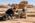 Arabie Saoudite. Madâin Sâlih. Mission archéologique franco-saoudienne dans l'antique cité nabatéenne de Hégra. Fouille dans l'ancien centre urbain. Dégagement d'un objet ayant probablement servi de récipient. Jérôme Rohmer, archéologue, avec un ouvrier pakistanais.