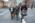 """FR: Mondomusica New York : Test """"Stradivari vs. the Modern Violin"""". Claudia Fritz Chargée de recherche au CNRS coordonne le test. Le violoniste Aaron Boyd tenant 2 stradivarius à 8 Millions de $ pièces , le luthier américain """"Joseph curtin"""" et claudia Fritz traversant une rue de  NY pour se rendre au laboratoire d'acoustique de la Cooper Union Institute afin d'étudier avec plus de précisions la réponse acoustique des violons sélectionnées pour le test de préférences des auditeurs qui se déroulera l'après midi EN: Mondomusica New York:""""Stradivari vs. the Modern Violin """"test . Claudia Fritz (Researcher at the CNRS in musical acoustics) coordinating the tests. Claudia Fritz , the american violin maker Joseph Curtin and the violonist Aaron Boyd walking in New York  with two Stradivarius violins  (8 Millions$ each) toward  the Cooper Union Institute acoustic laboratory in order to improve the measurement of the vibrationnal  response of the selected violons."""