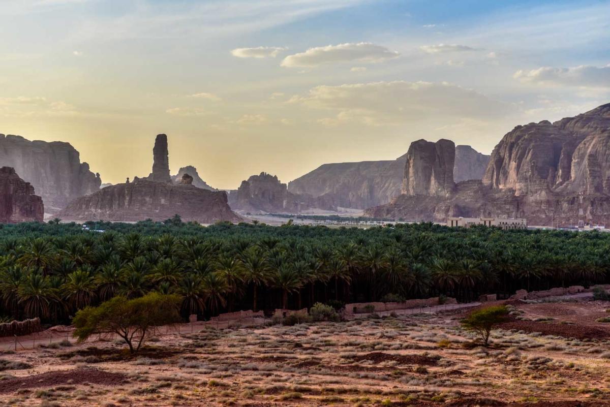 Arabie Saoudite, les alentours de Al Ula. L'oasis et la palmeraie.