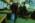 Aéroport Charles-de-Gaulle. Examen poussé du contenu des bagages par les douaniers grâce à un scanner.Charles-de-Gaulle Airport, France. Customers officers examine luggage in detail using a scanner.